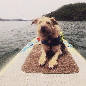 Chillin' on my SUP.