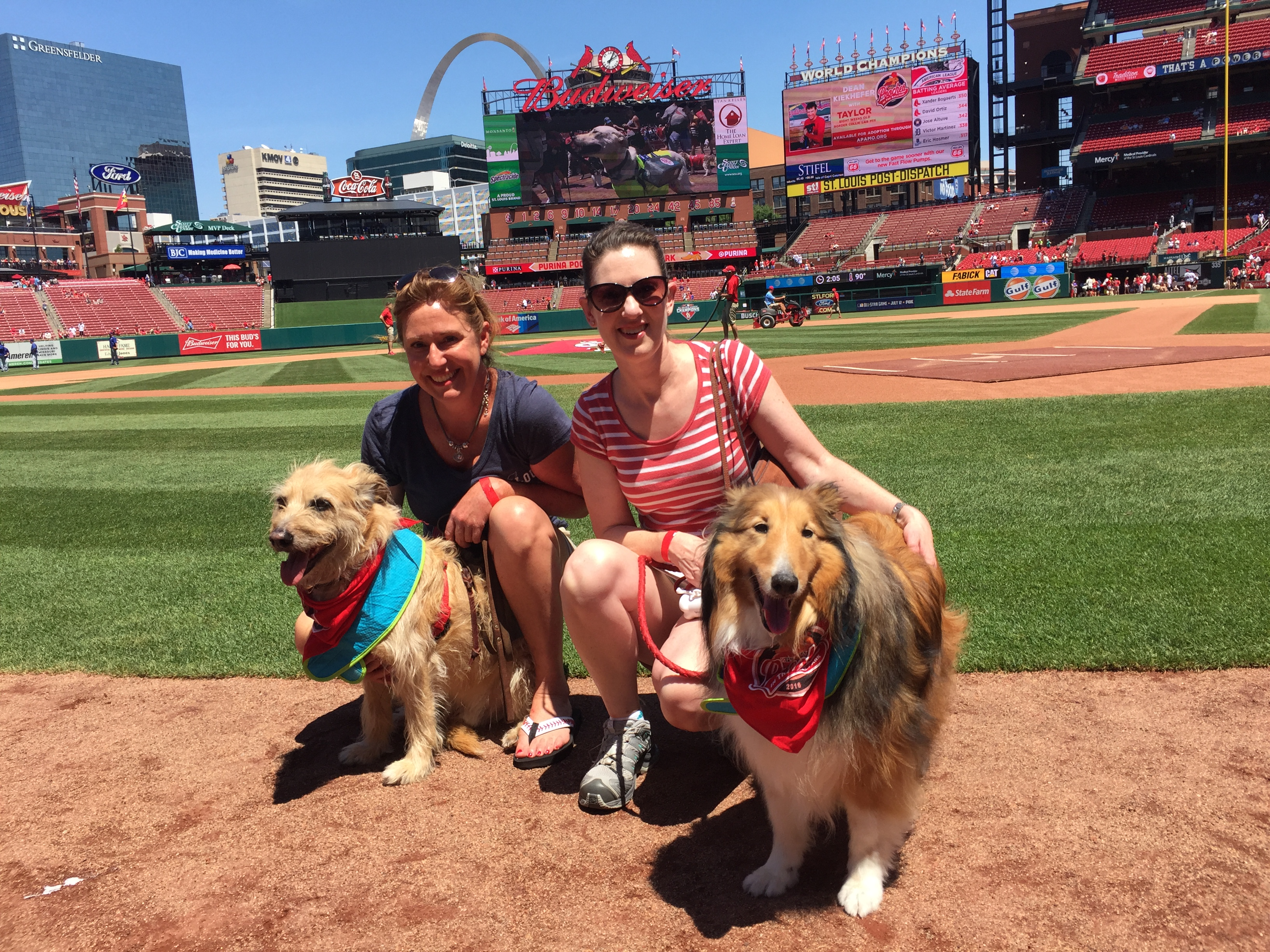 Standing on the field at Busch Stadium