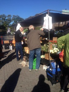 Dogs visit the Winter Park Farmer's Market with their owners.