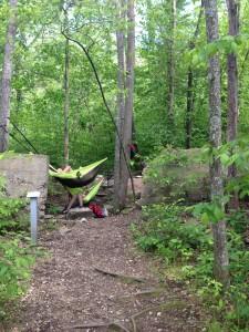 Hammocks tied to trees