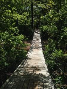 Wooden swinging bridge