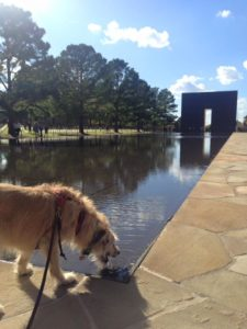 A quick drink at the OKC Memorial