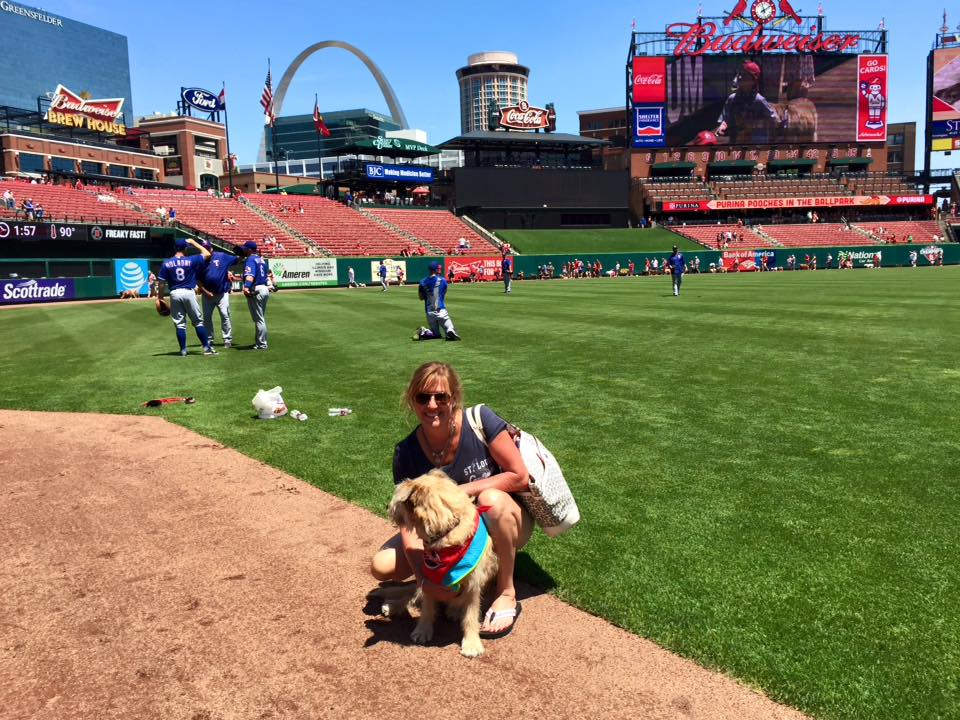 Purina Pooches in the Ballpark