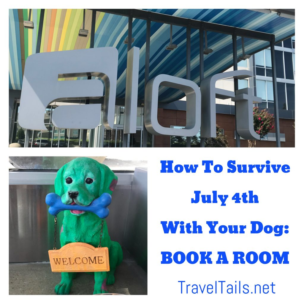 How to survive July 4th with your dog
