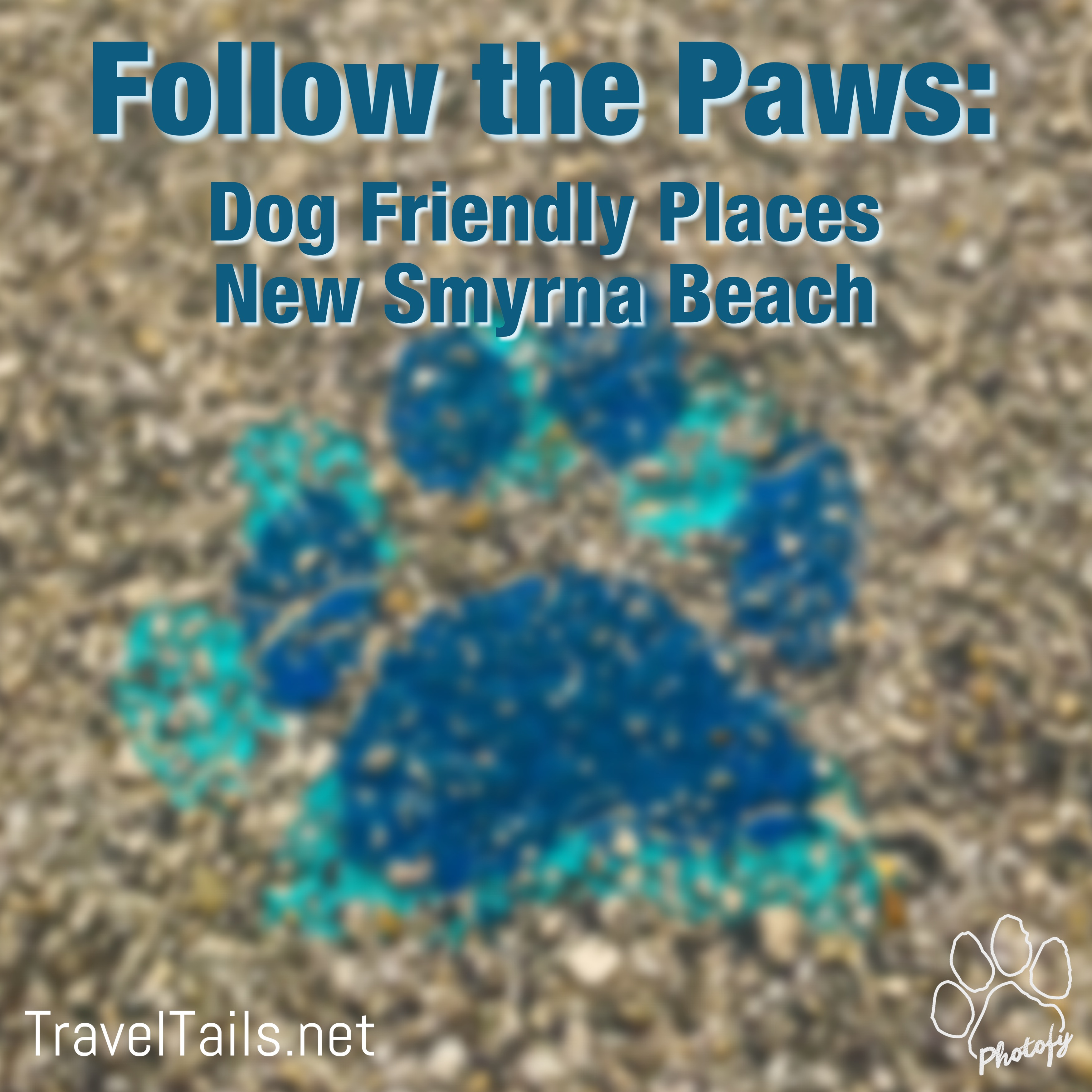 Follow the Paws: Dog Friendly Places in New Smyrna Beach