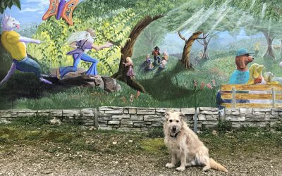 Patios, Parks, And Trails You Should Hit With Your Dog in Northwest Arkansas