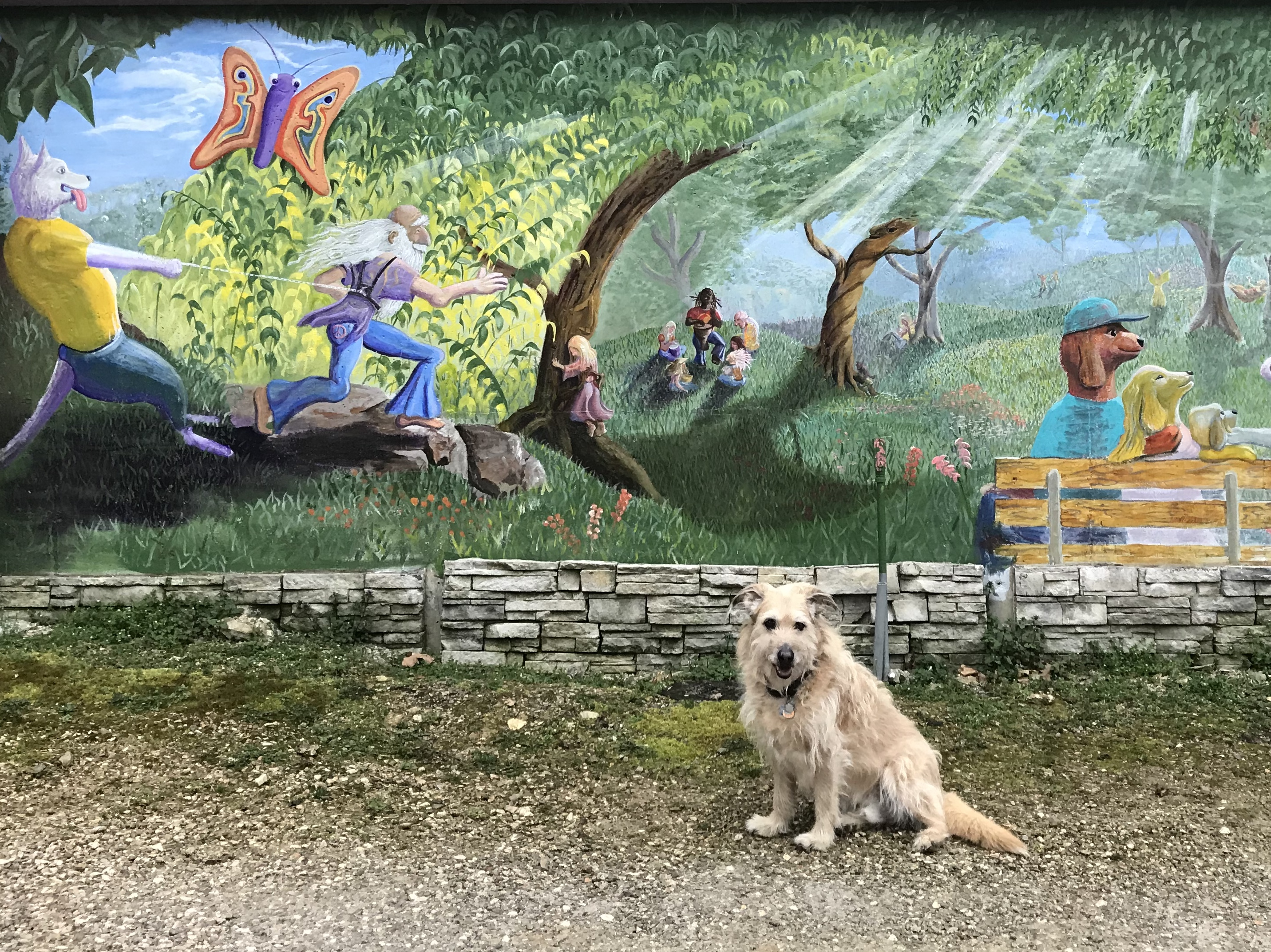 Eureka Springs dog park mural