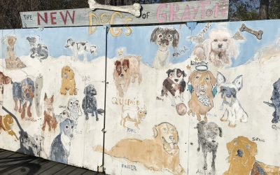 The Dogs of Grayton Beach and The Birth of An Unofficial Motto