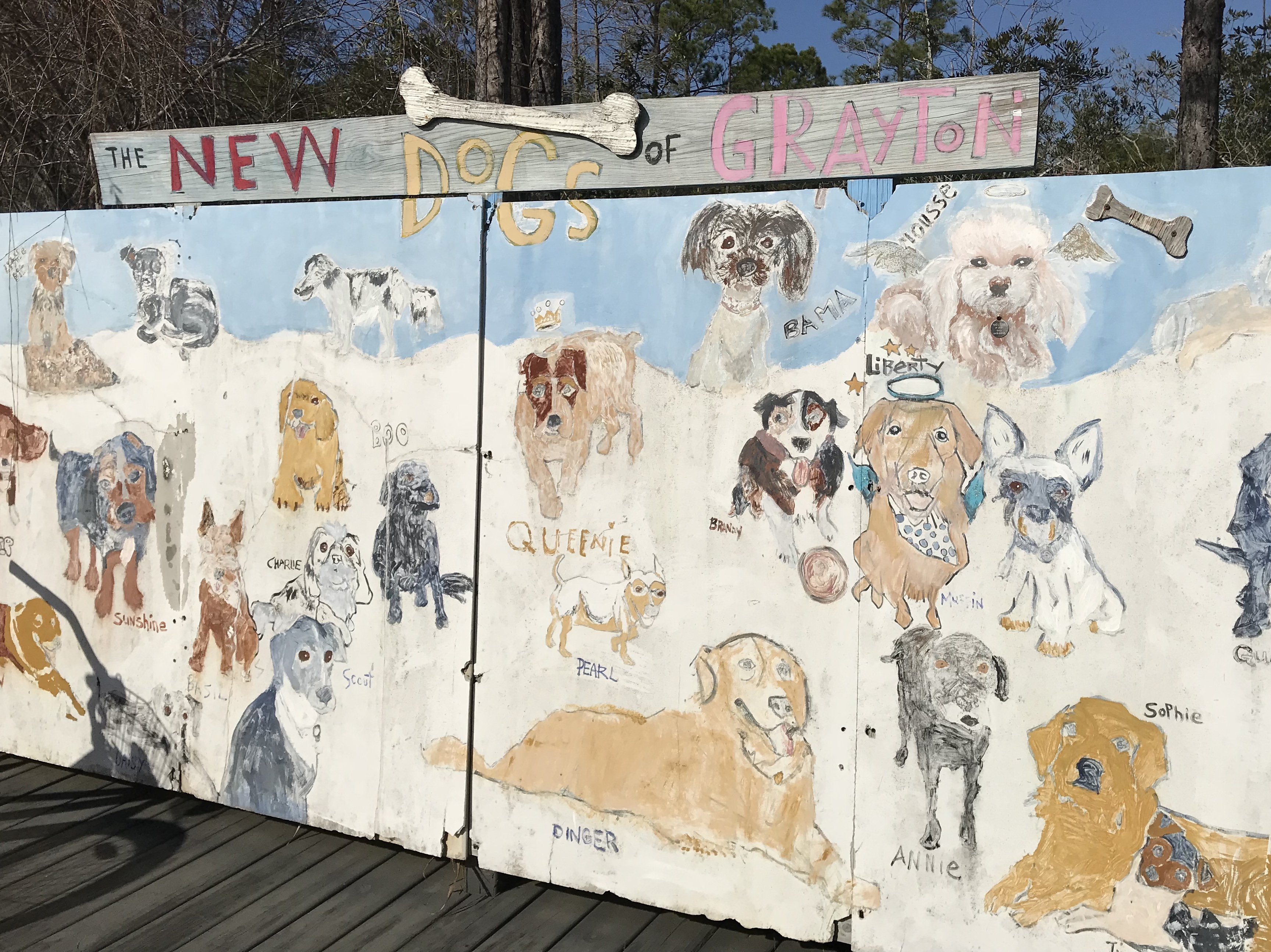 New Dogs of Grayton mural features locally owned dogs