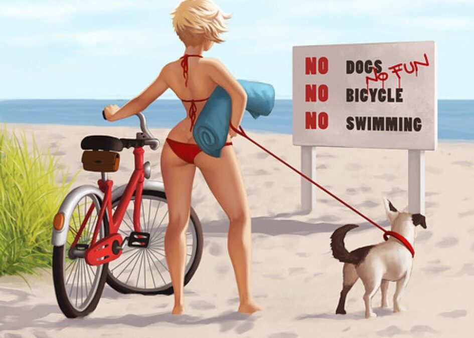 5 Dog Travel Dos and Don'ts